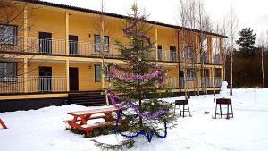 Guest house Berezki, Penzióny  Pribylovo - big - 28