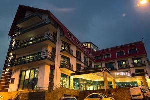 Hotel Ski & Sky - Predeal
