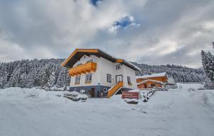 Appartement Schneider by HolidayFlats24 - Apartment - Viehhofen