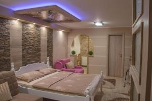 Apartments Josipovic, Appartamenti  Zlatibor - big - 24