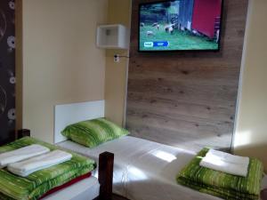 Guest House Bona Fides, Гостевые дома  Нова-Варош - big - 61
