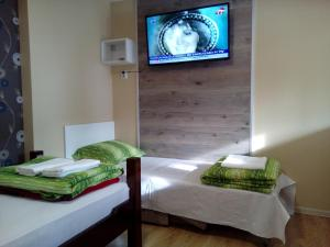 Guest House Bona Fides, Гостевые дома  Нова-Варош - big - 59