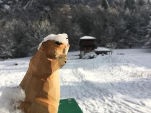obrázek - 3 bedroom chalet in a ski resort in the Alps: La Marmotte