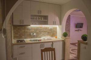 Apartments Josipovic, Appartamenti  Zlatibor - big - 73