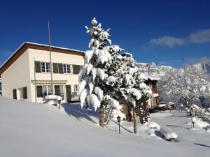 Casa Fluretta - Apartment - Flumserberg