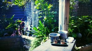 obrázek - Kotuku Cottage