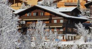 Heavenly - Apartment - Zweisimmen