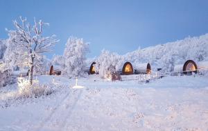 Kirkenes Snowhotel (3 of 47)