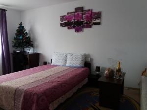 Apartament Elena, Apartments  Tîrgu Ocna - big - 11