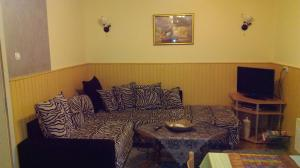 Apartments Tofilovic, Appartamenti  Zlatibor - big - 6