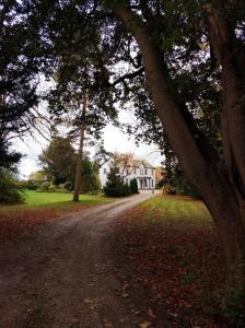 obrázek - Charming Victorian home