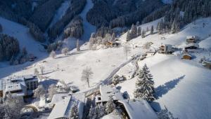 Sunny Ferienwohnungen Ski In - Ski Out, Apartments  Zell am See - big - 29