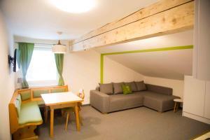 Apartment Filzmoos - Chalet