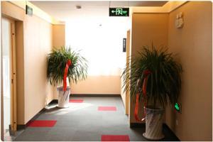 Hostels und Jugendherbergen - Thank Inn Chain Hotel Shandong Qingdao Huangdao District Maolongshan District