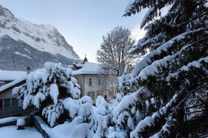 Hotel Eiger, Hotels  Grindelwald - big - 47