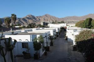 . Oasis de Atacama