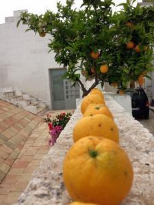 Albergo Diffuso Il Casale (3 of 56)