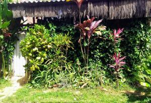 Casa do Pina - Itacaré
