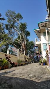 Dr. House - Nakhon Thai
