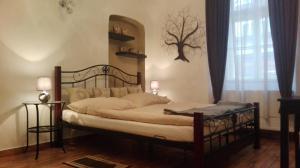 Apartment Jakubská 676