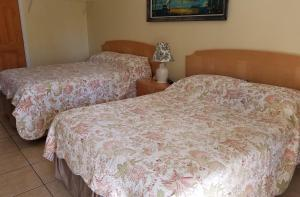Sands Point Motel, Motely  Clearwater Beach - big - 30