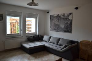 ALPIN apartma