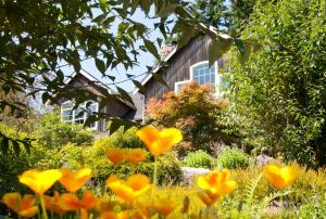 Hideaway Lodge B and B - Accommodation - Woodinville