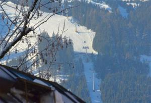 Villa Alpenbach by Alpen Apartments - Hotel - Zell am See