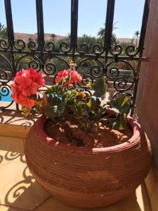 Riad Dar Bab Todra, Riads  Tinghir - big - 72