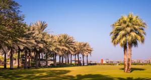 Coral Beach Resort Sharjah, Курортные отели  Шарджа - big - 13