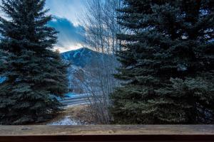 Baldy View Snowcreek, Prázdninové domy  Sun Valley - big - 39