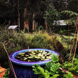 Banksia Lake Cottages, Vidiecke domy  Lorne - big - 24