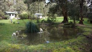 Banksia Lake Cottages, Vidiecke domy  Lorne - big - 7