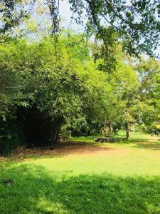 Nelum Villa Holiday Resort, Hotely  Anuradhápura - big - 54