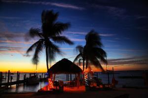 obrázek - Key Lime Sailing Club and Cottages