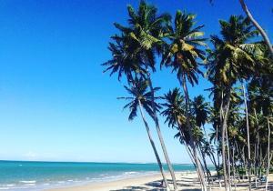 Pousada Tok do Mar, Гостевые дома  Rio do Fogo - big - 12
