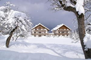 appartementen Haus Bergblick - Apartment - Gosau