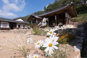 Nosongjung Jongtaek, Guest houses  Andong - big - 59