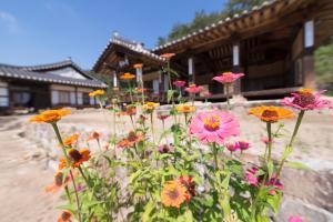 Nosongjung Jongtaek, Guest houses  Andong - big - 57