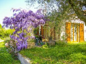 Casa Violet, Апартаменты  Портоферрайо - big - 9