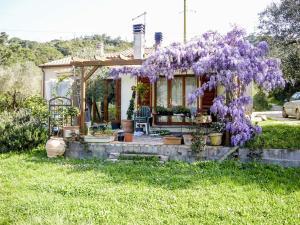 Casa Violet, Ferienwohnungen  Portoferraio - big - 19