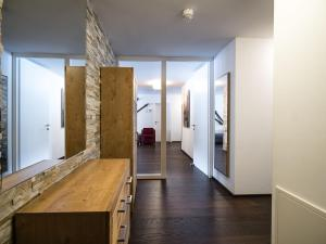 Mountain and Lake Twenty Two, Apartmány  Zell am See - big - 15