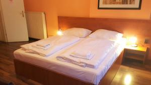 Pension Madara, Bed and Breakfasts  Vídeň - big - 20