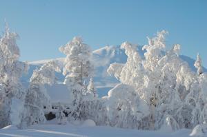 Kvitåvatn Fjellhytter, Дома для отпуска  Рьюкан - big - 40