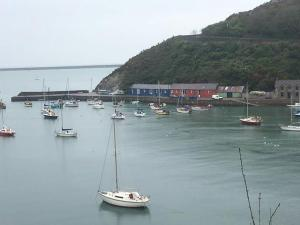 Cobblers Roost, Holiday homes  Fishguard - big - 6