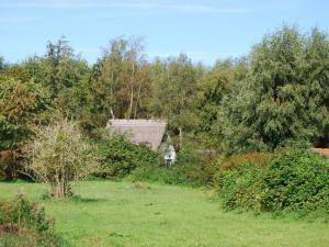 Romantische Finnhütte in der Heide - Bartelshagen
