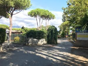 Casa Vacanze Bastogi a Marina di Massa - AbcAlberghi.com