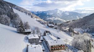 Sunny Ferienwohnungen Ski In - Ski Out, Apartments  Zell am See - big - 18