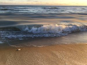 Sea Lion, Dovolenkové domy  Nantucket - big - 52