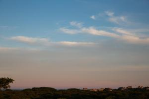 Sea Lion, Dovolenkové domy  Nantucket - big - 58